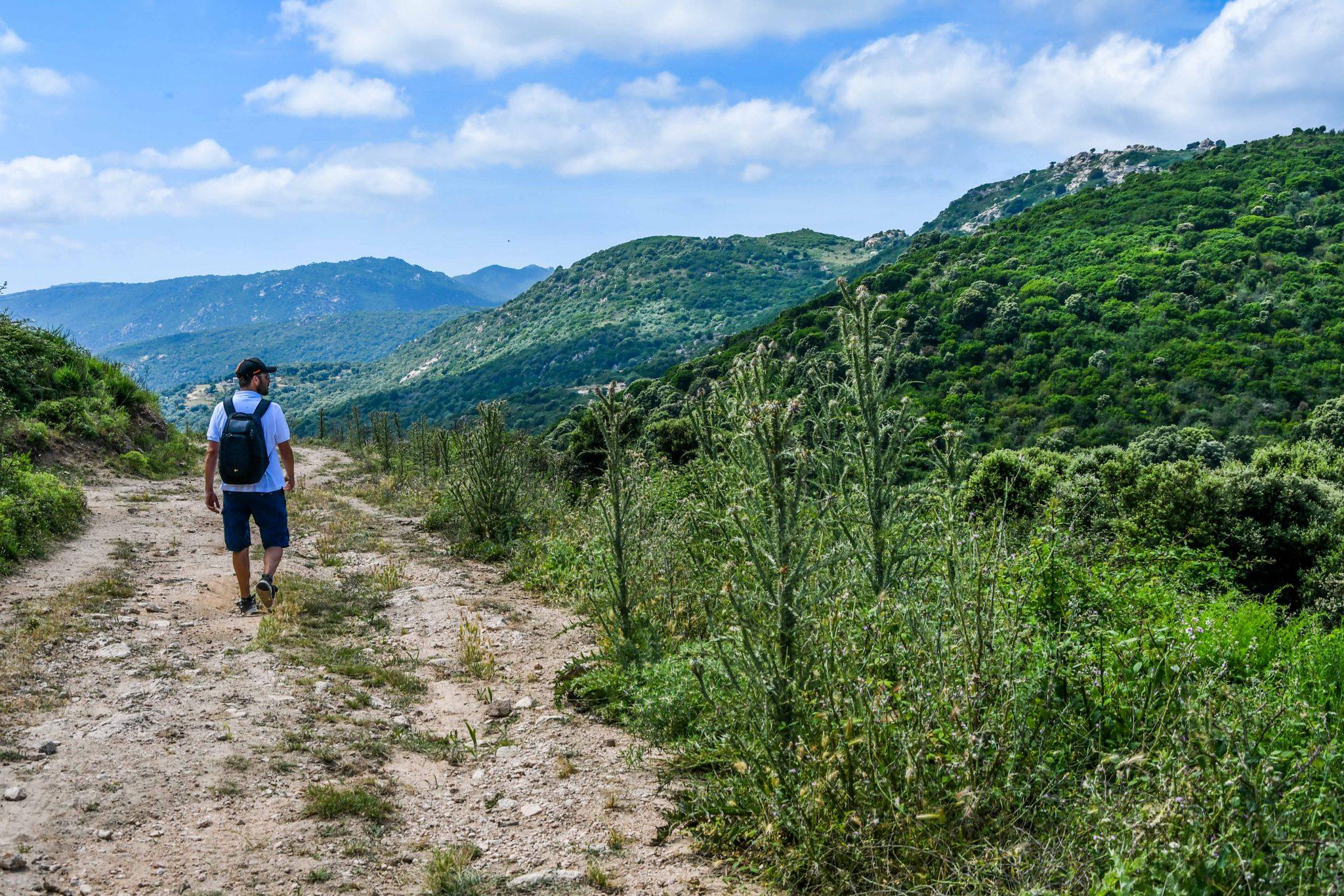 à pied en pleine nature corse dans le Sartenais Valinco Taravo