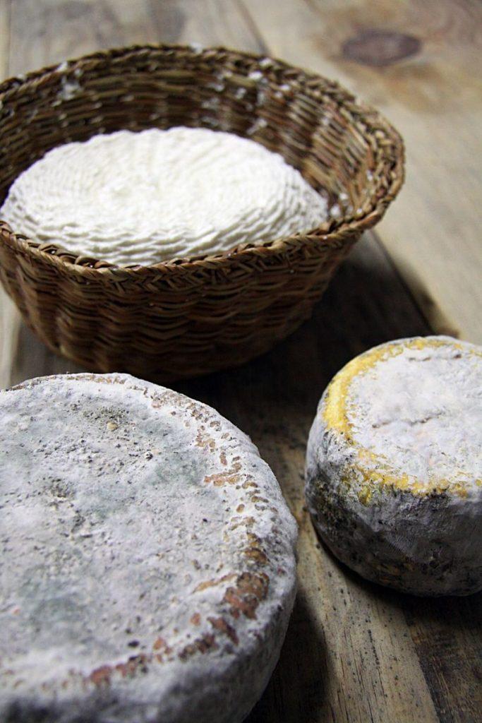 Brocciu fromage corse du sud