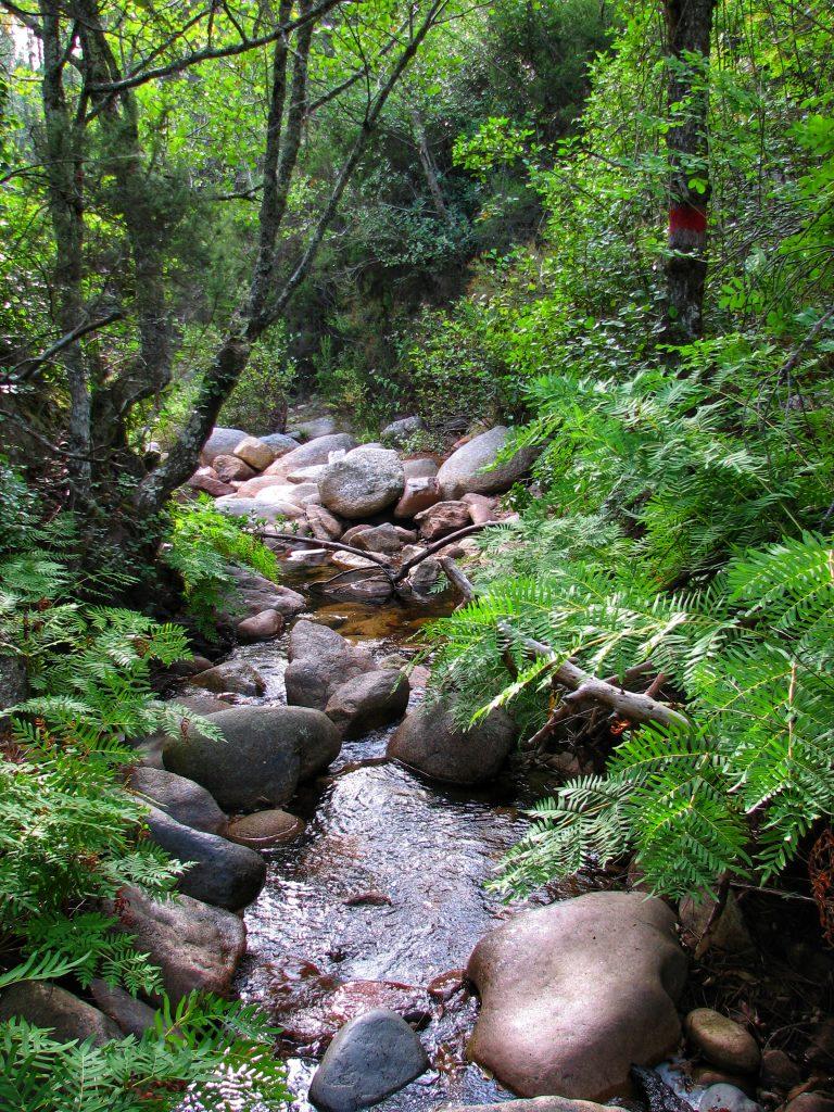 Rivière Baracci Canyoning Corse du sud
