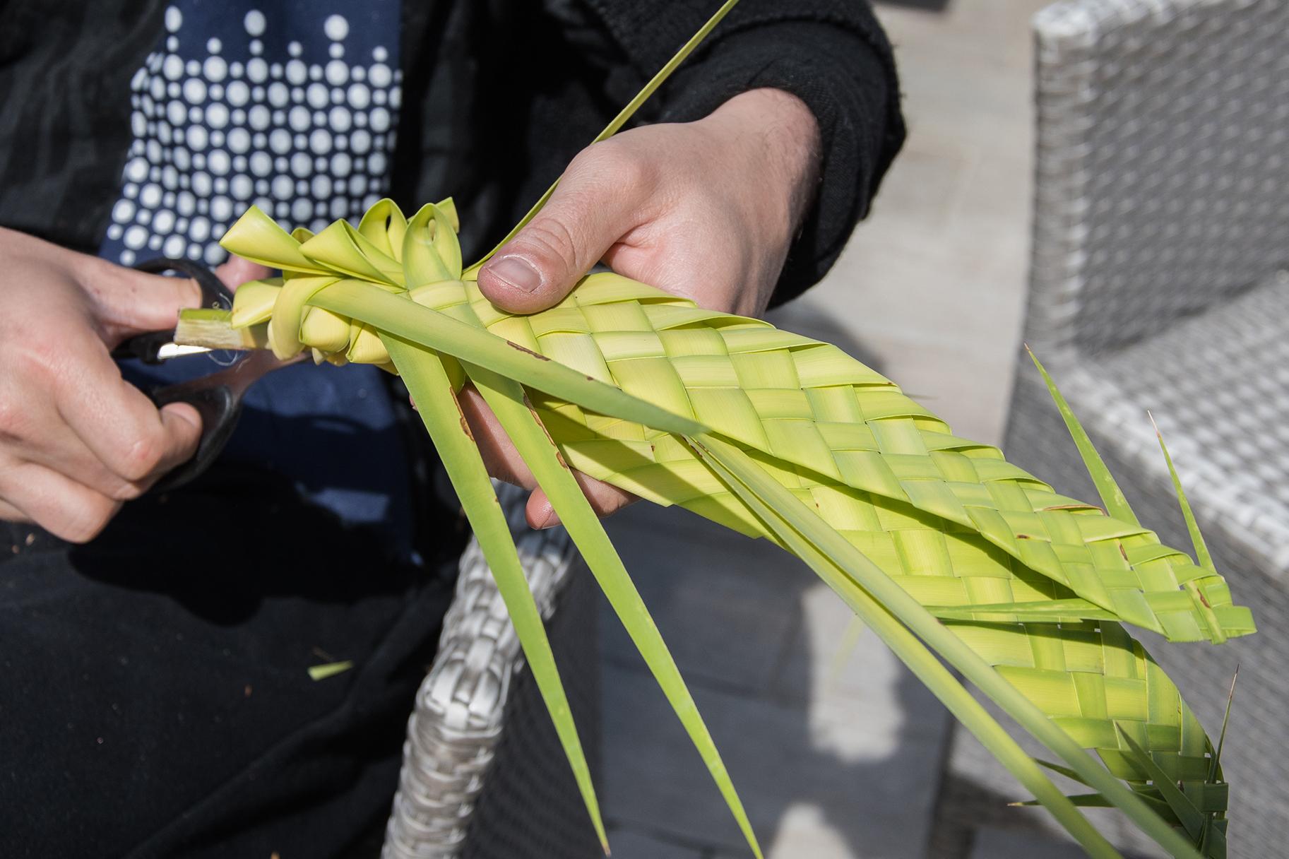 Rameau tradition religieuse corse à Pâques
